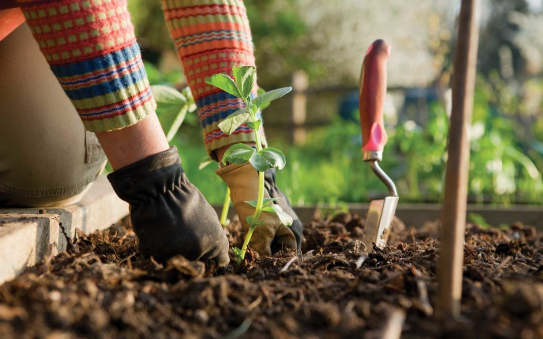Self-Care Pain Relief for Gardeners